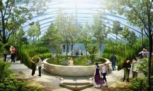 jardines de barco Physalia