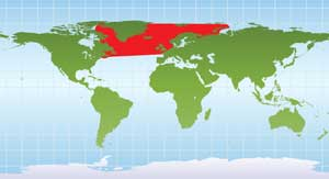 mapa distribución frailecillo