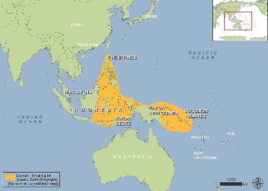 mapa grande del Triángulo de Coral