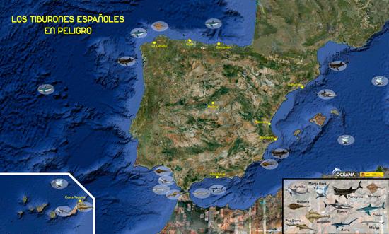 mapa de los tiburones en España