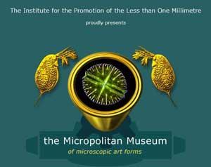 Micropolitan Museum