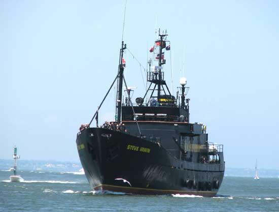 MV Steve Irwin en Melbourne