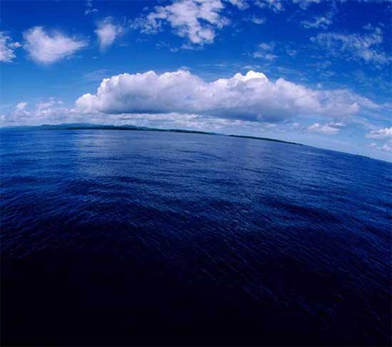océanos, carbono azul