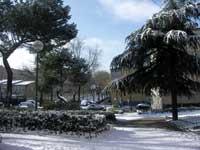 nieve en Madrid, enero 2010