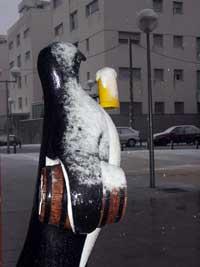 pingüino nevado caf. Cruz Blanca Fuencarral, Madrid - enero 2010