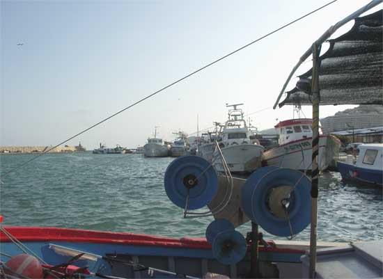 puerto pesquero Peñíscola, pesca sostenible