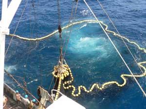 red de cerco, subiendo pescado