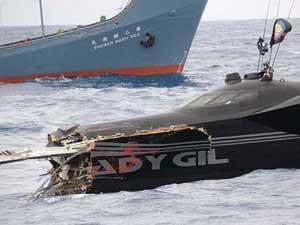El barco de Sea shepherd, Ady Gil de hunde