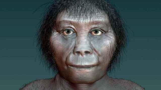 representación artística del Homo Floresiensis