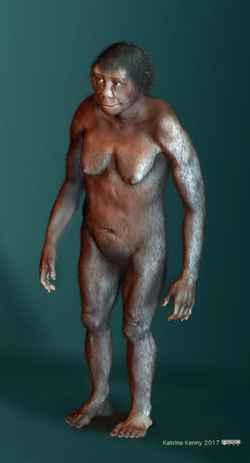 representación artística de una hembra de Homo Floresiensis