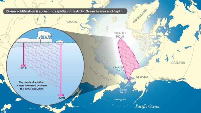 acidificción en el Océano Ártico