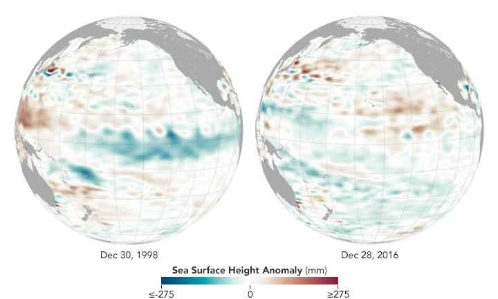anomalías superficie del mar diciembre 1998-2016