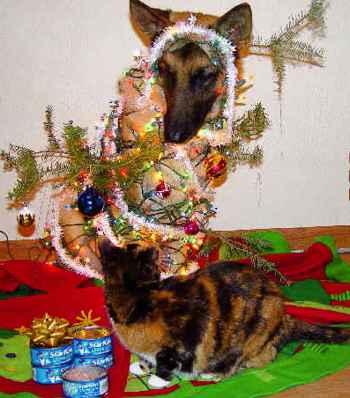 árbol de Navidad y mascotas