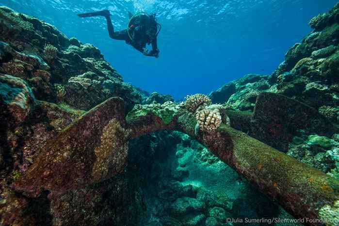 buzo investiga un ancla de un naufragio en Australia