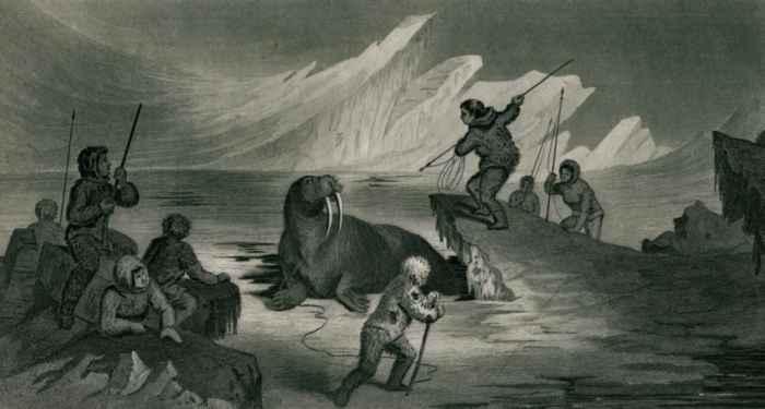 caza de una morsa por inuit