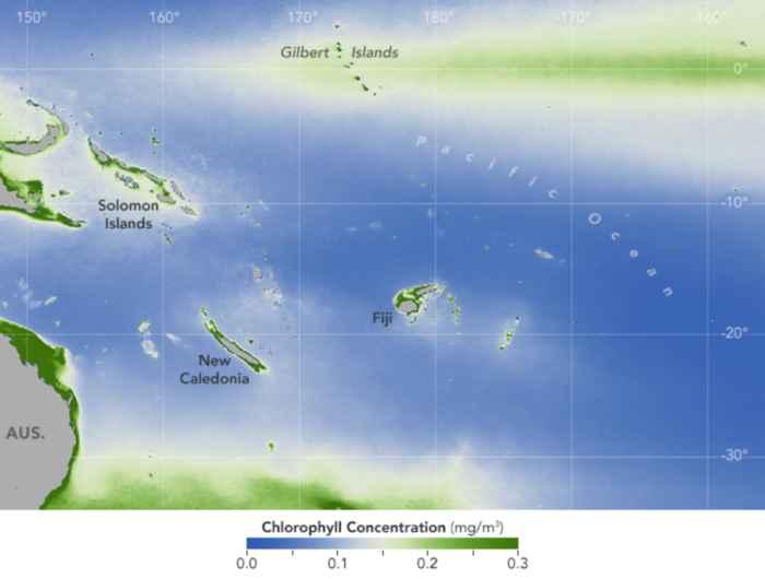 concentración de clorofila en el océano