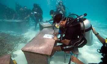 consejo de ministros submarino en las Maldivas