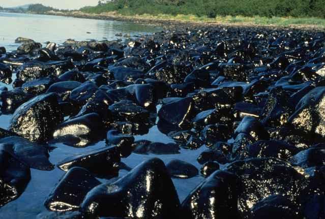 derrame del Exxon Valdez