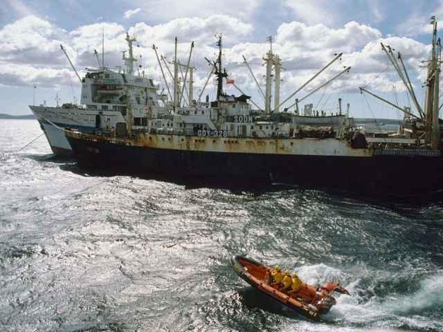 gestión de la pesca