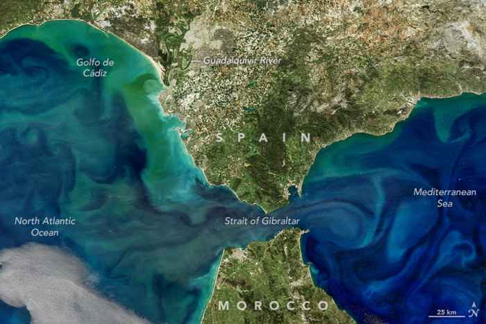 floraciones de fitoplancton en el Estreco de Gibraltar