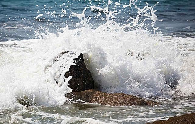hierro disuelto en el océano
