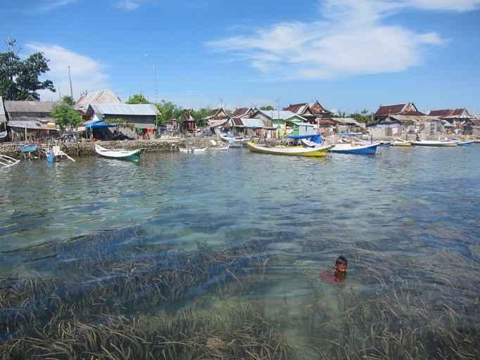 pastos marinos en Indonesia