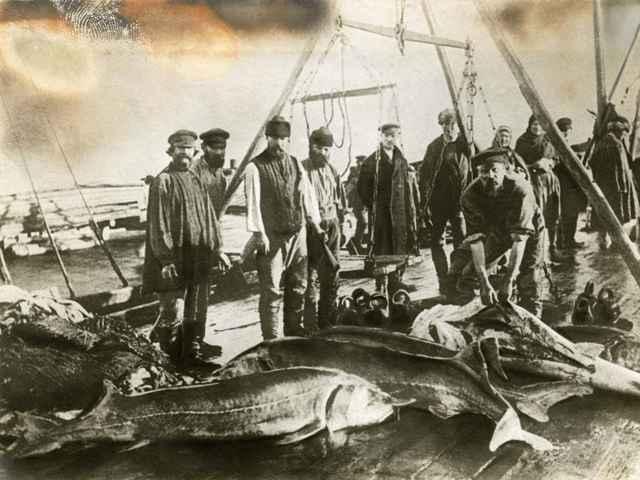 pesca antigua de esturión beluga
