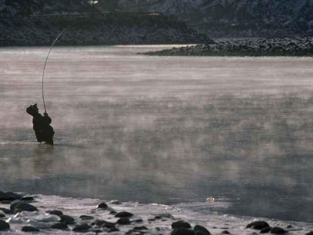 pesca con caña