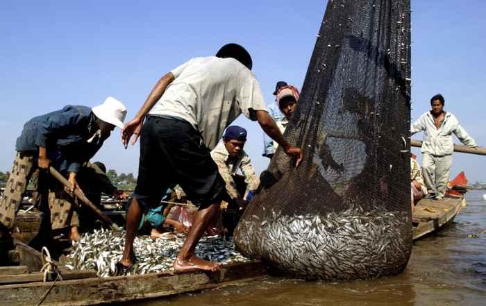 pesca con red dai