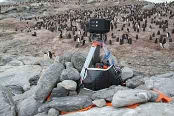 cámara de observación de pinguinos Adelie