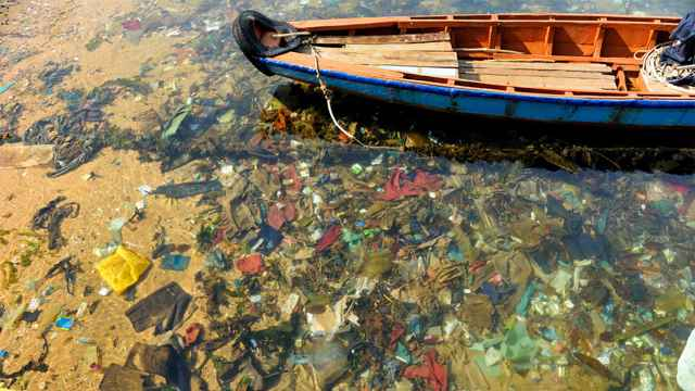 plásticos en el medio marino