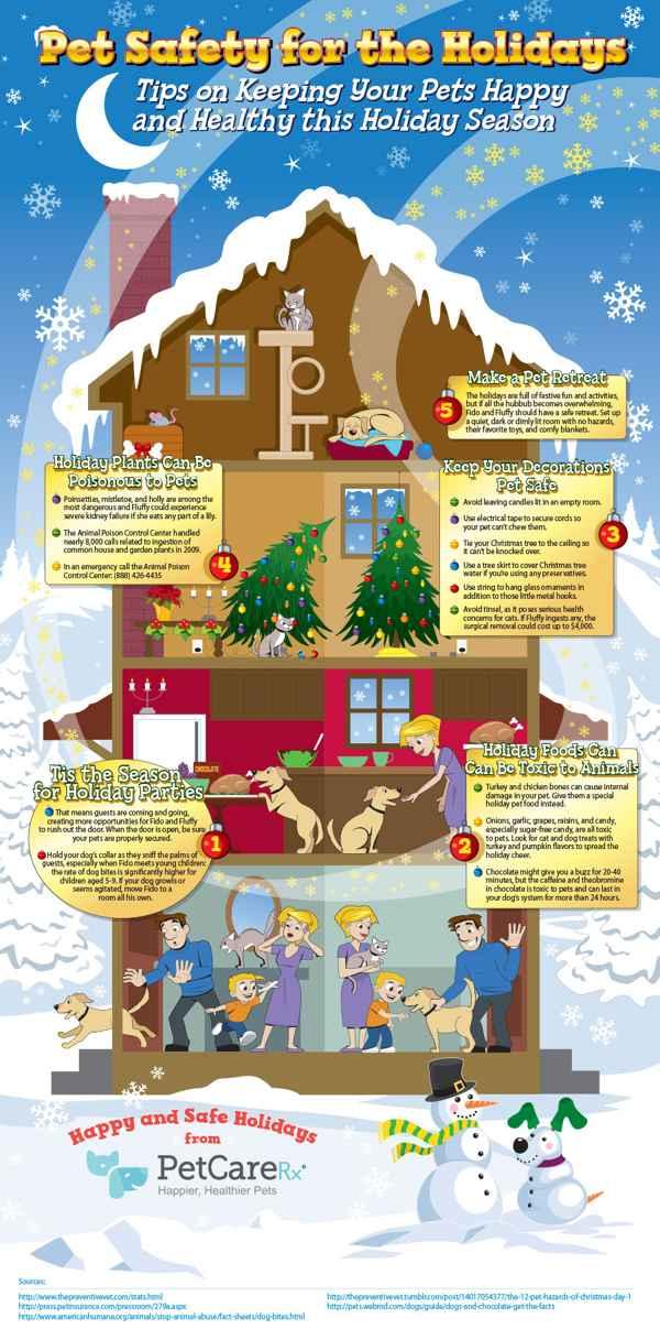 seguridad de las mascotas en Navidad