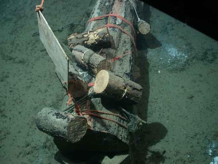 experimento con troncos hundidos