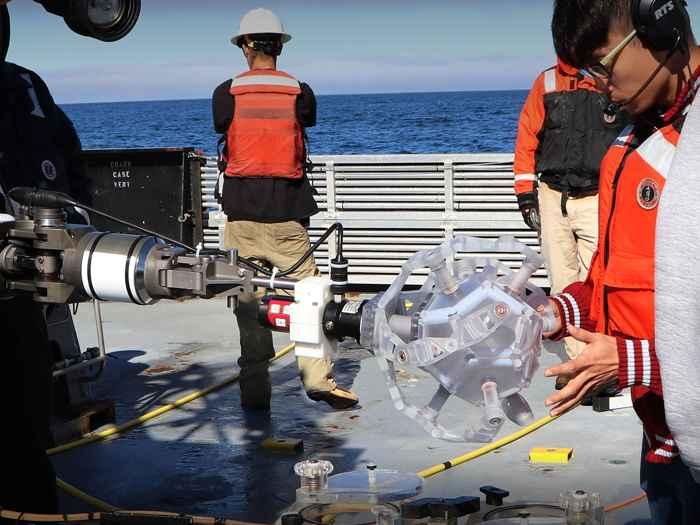 Pokebolet montado en el ROV Ventana