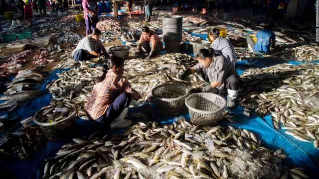 mano de obra ilegal en la industria pesquera