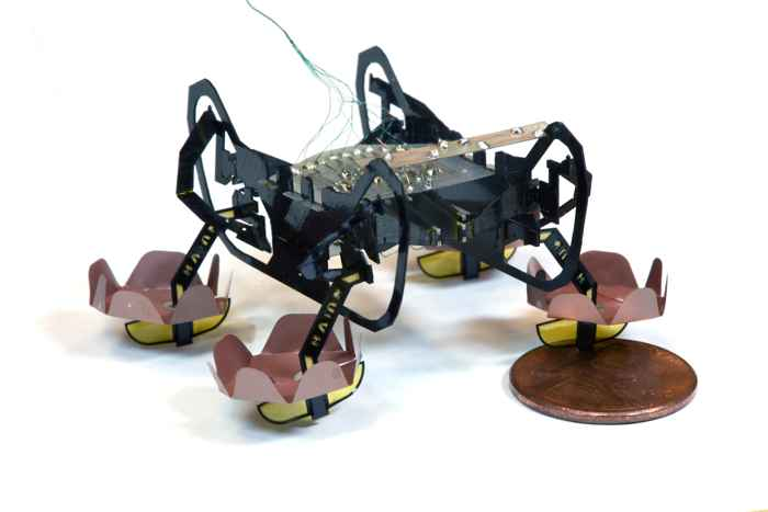 robot cucaracha HAMR