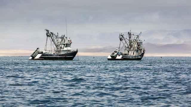 pesqueros ilegales