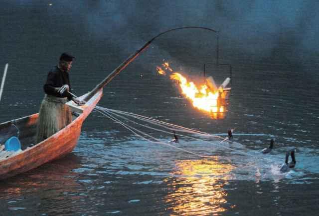 ukai, la pesca con cormoranes en Japón