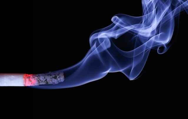 cigarrillos afectan al medio ambiente