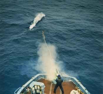 disparo de un cañón ballenero