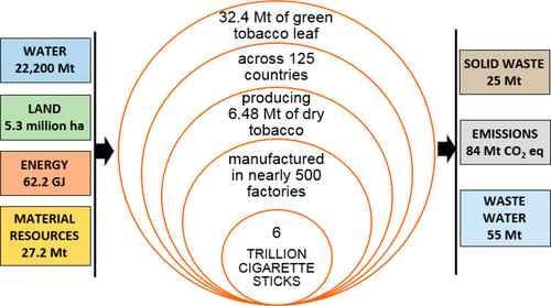 impacto del tabaco en el medio ambiente