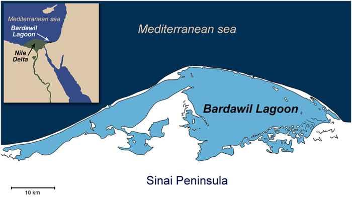 lago Bardawil