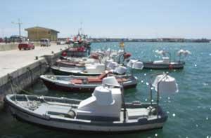 barcas con focos, puerto de Vinaroz