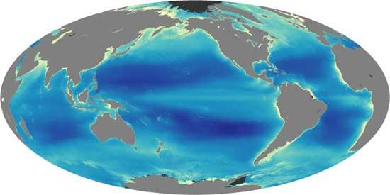 concentración de clorofila en los océanos 2002-2010