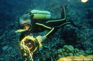 Cousteau buceando