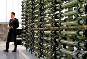 David Miliband en fábrica de biocombustible de algas