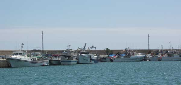 flota pesquera artesanal Vinaroz