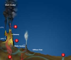 fumarolas hidrotermales