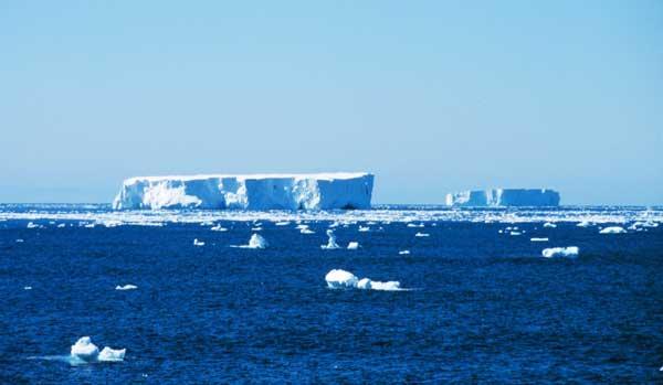 icebergs Antártida