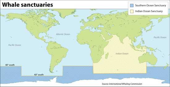mapa de los Santuarios de las Ballenas
